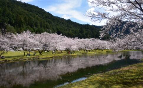 奈良県 下北山村にて NikonD7200で撮影