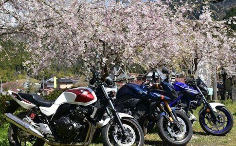 美山の桜とバイクたち Nikon D7200